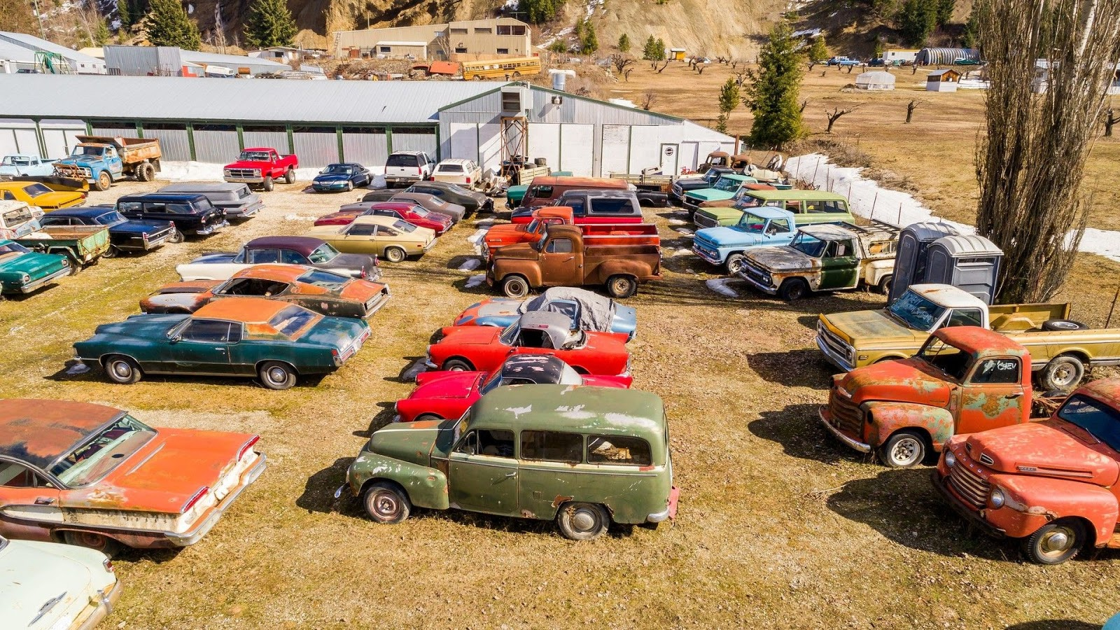 Mua nhà được tặng 340 xe cổ