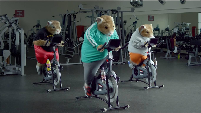 Kia Soul và hành trình của những chú hamster