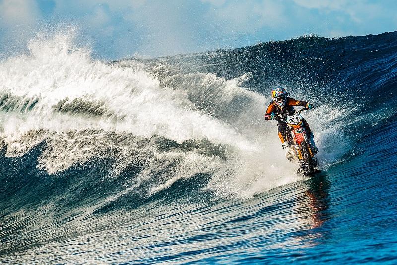 Lướt sóng bằng xe…cào cào