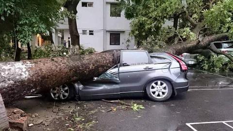 Các hình thức bảo hiểm ô tô tài xế Việt cần biết