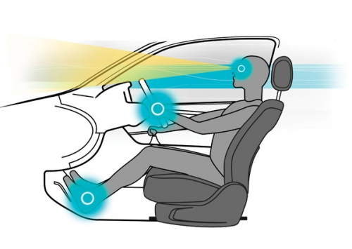 Tư thế ngồi thế nào cho đúng với tài xế mới?