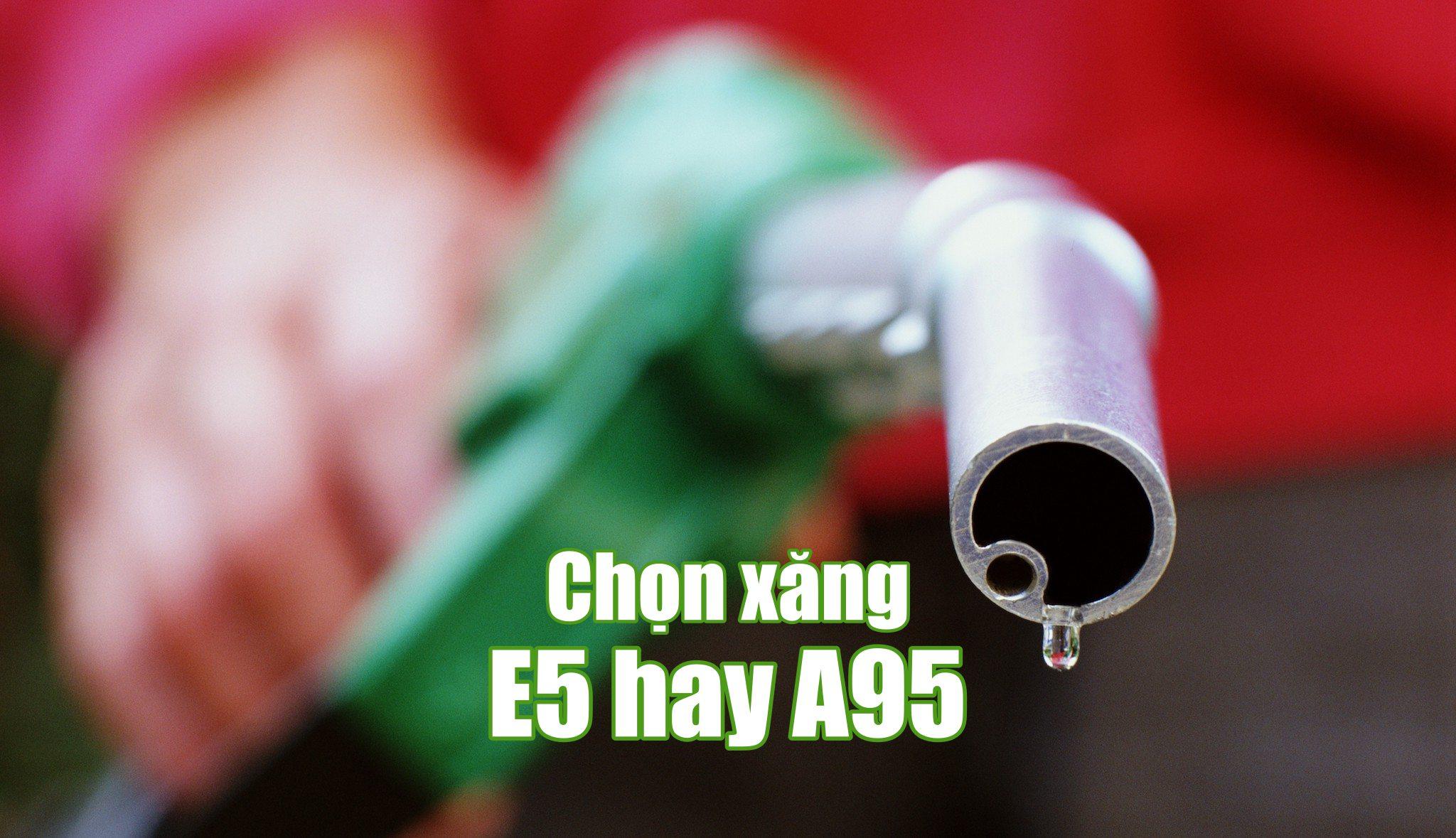 xang-95-hay-e5-hay-de-thi-truong-tu-dao-thai-thay-vi-ep-buoc