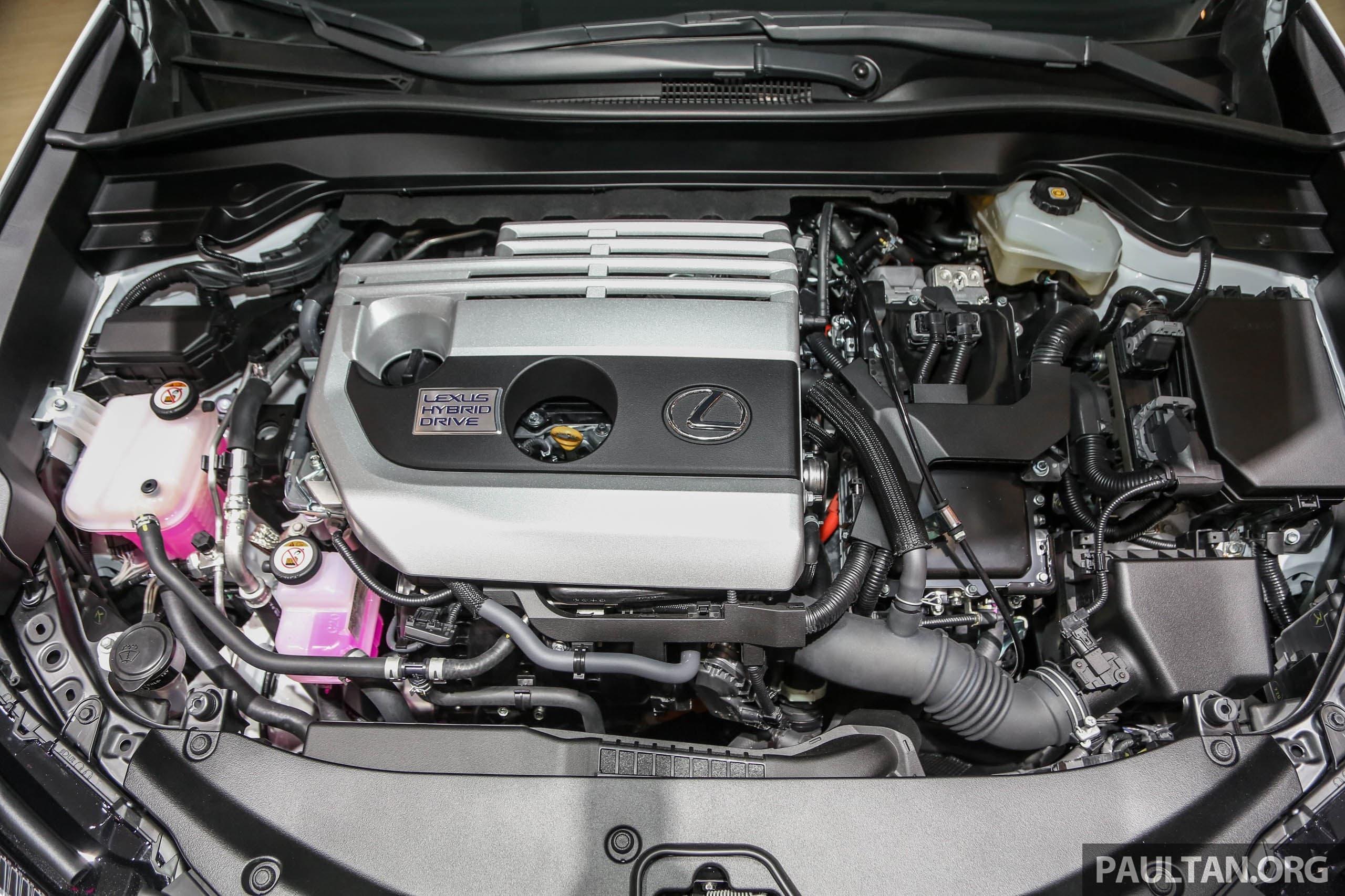 Xe sang giá 'mềm' Lexus UX có giá từ 1,6 tỷ đồng ra mắt thị trường Đông Nam Á