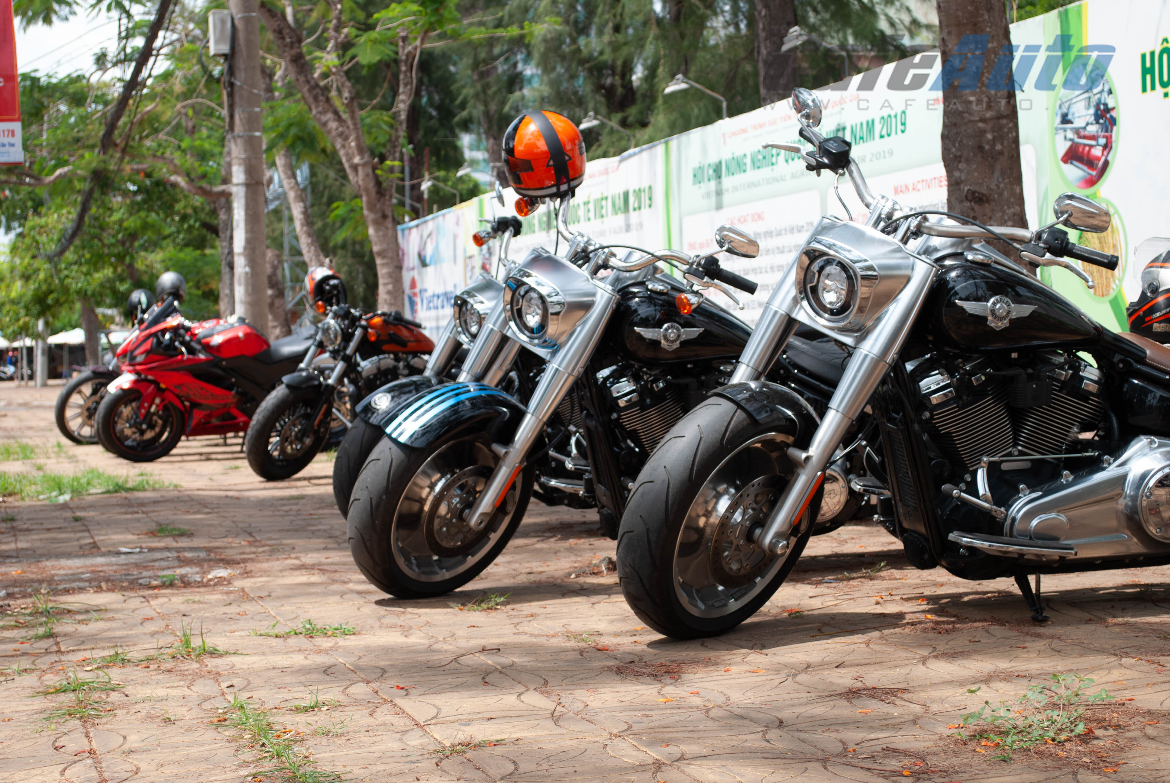 harley-CT-cafeauto-2
